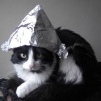 TIN FOIL CAT IN A HAT